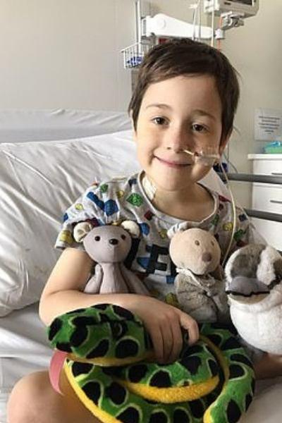 menino em hospital com ursinhos colo