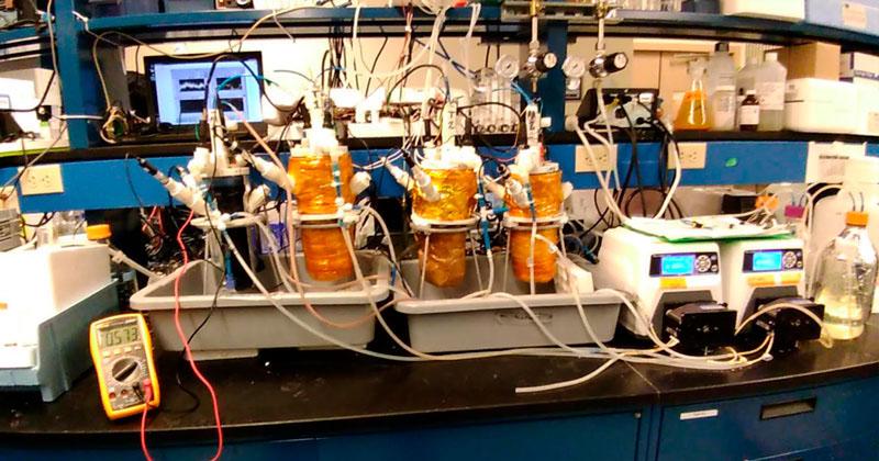 bio bacterias geradoras eletricidade águas esgoto
