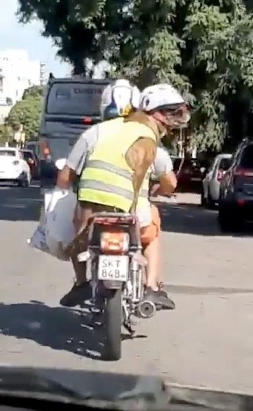 cachorro de moto 1