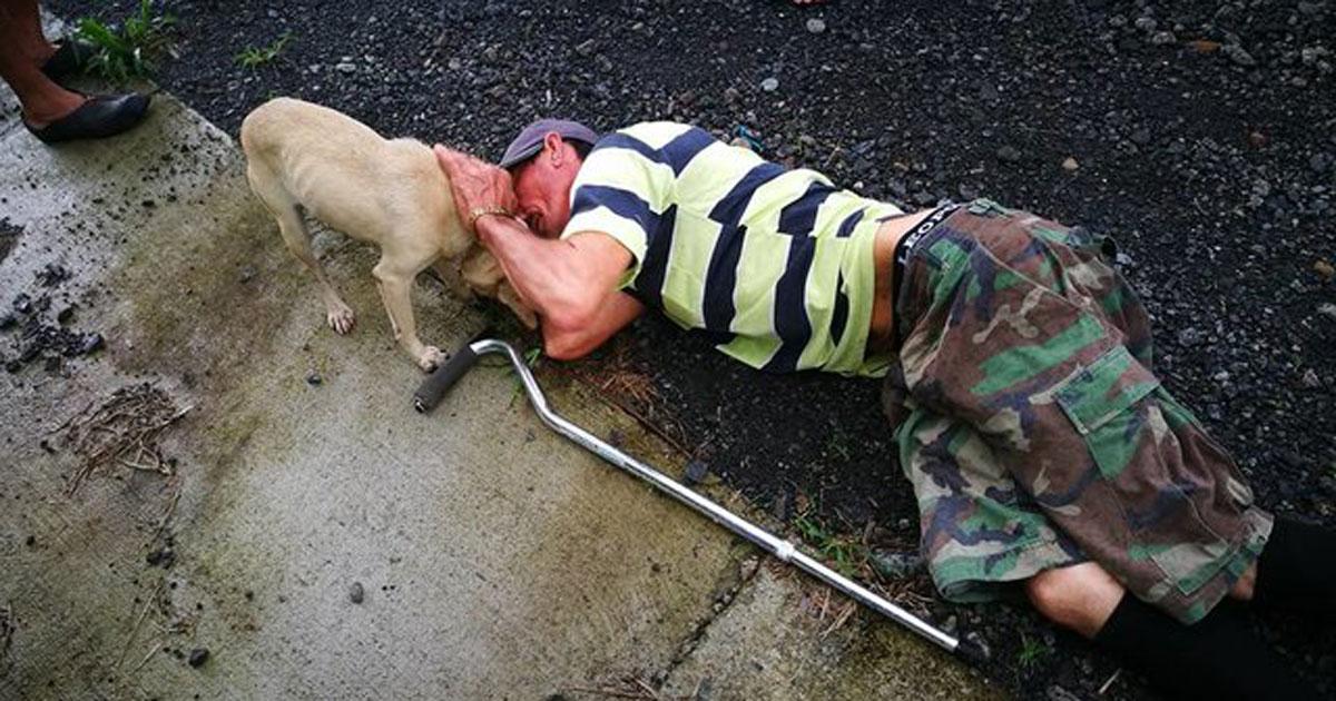 Cão ao lado de dono deitado no chão