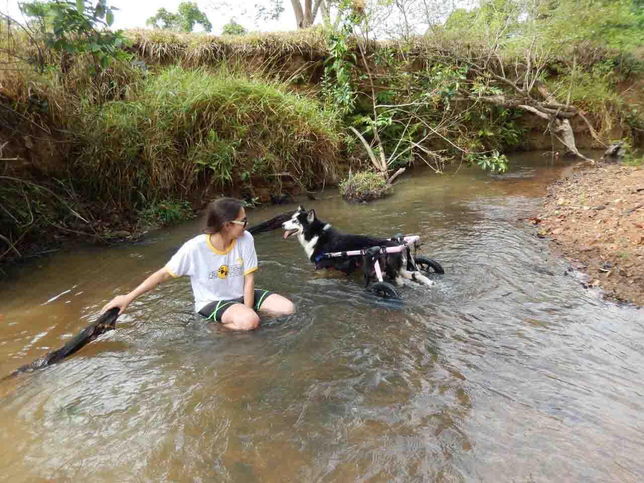 mulher brincando com cadela em riacho