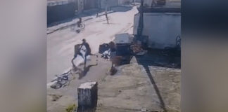 desconhecido bate bandido salva mulher assalto