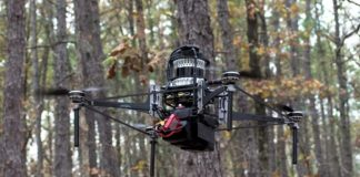 drone voando entre árvores floresta pinus