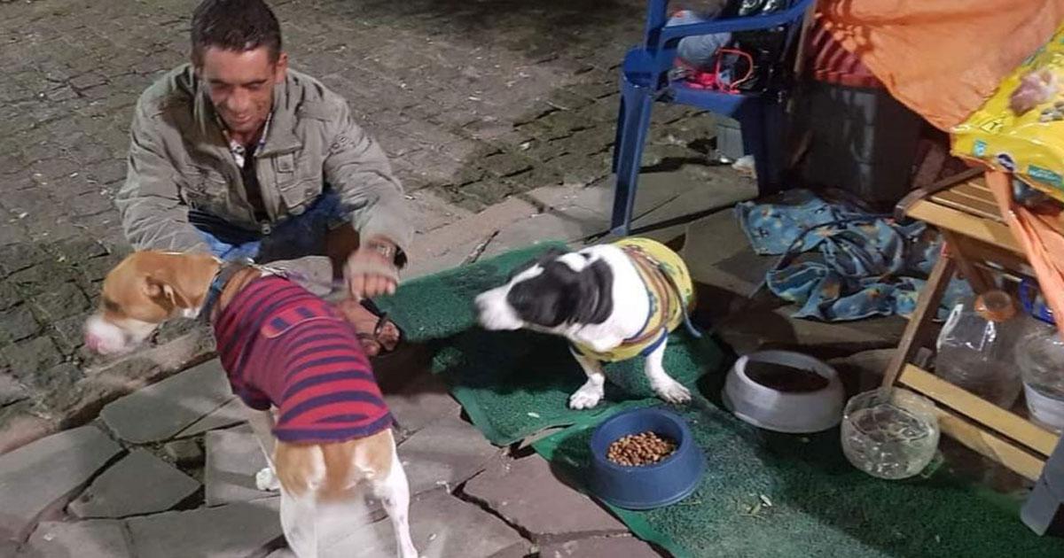 Homem com cachorras na rua