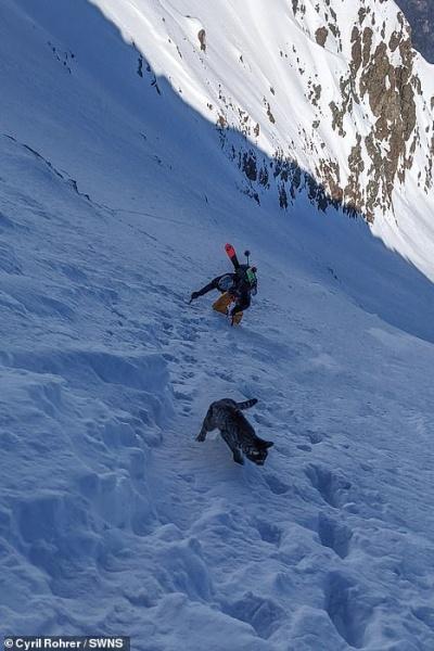 gato e homem subindo montanha nevada