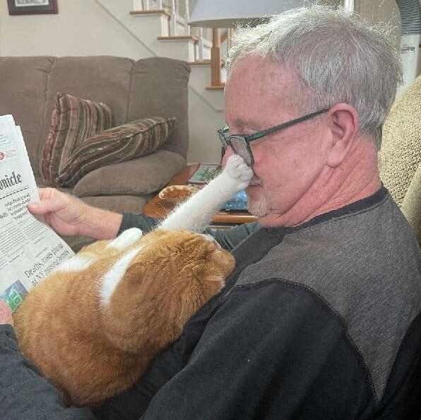 gatinho coloca pato rosto idoso enquanto lê jornal
