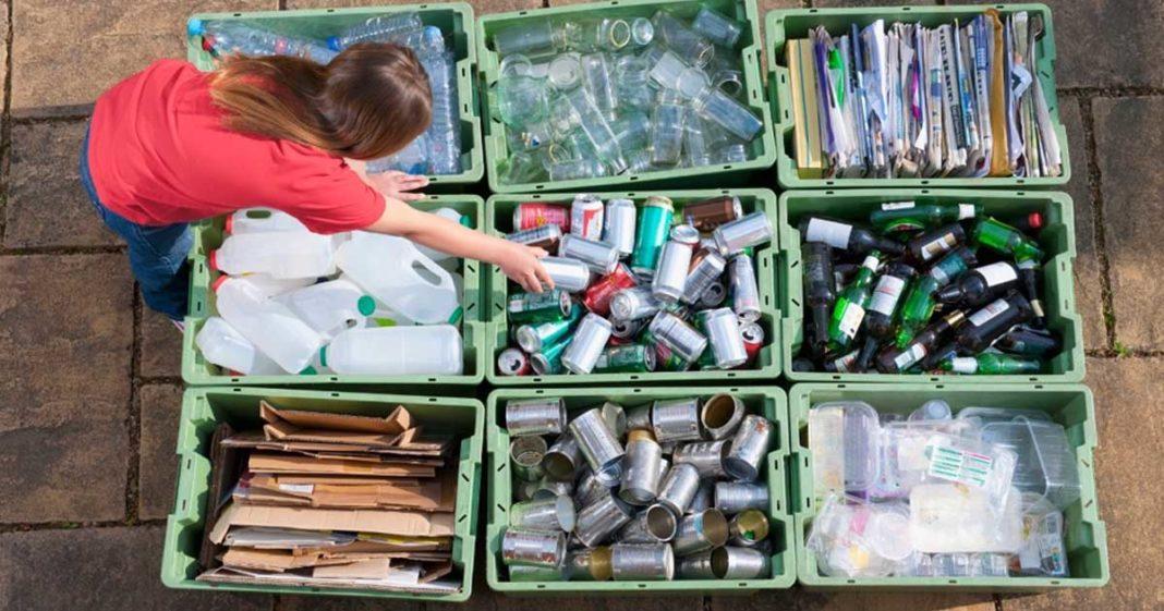mulher separando resíduos recicláveis caixa