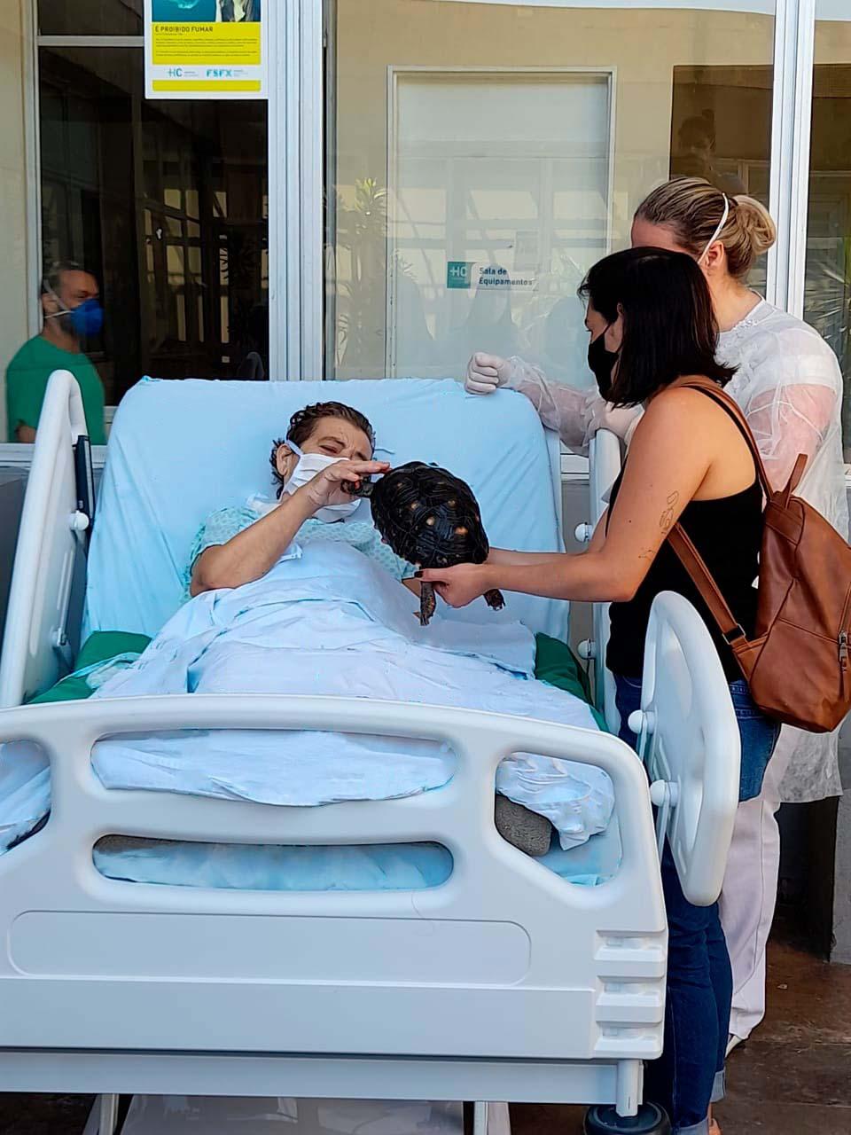 idosa recebe visita jabuti hospital
