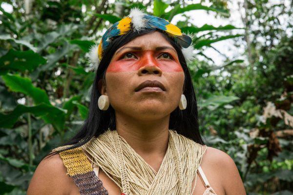 indígena pintada em floresta