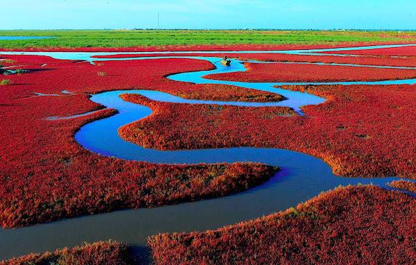 praia vermelha china 1