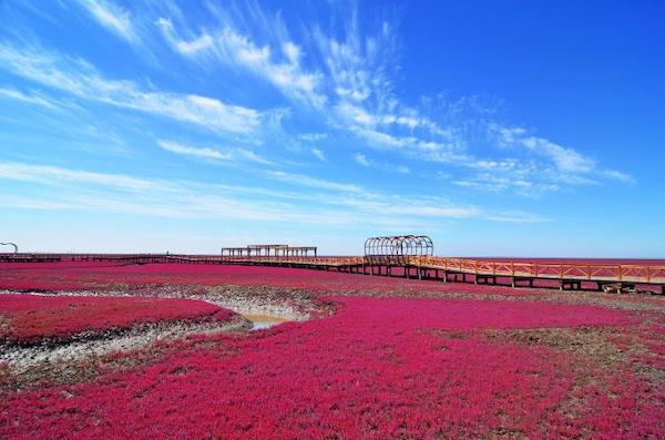 Praia Vermelha na China