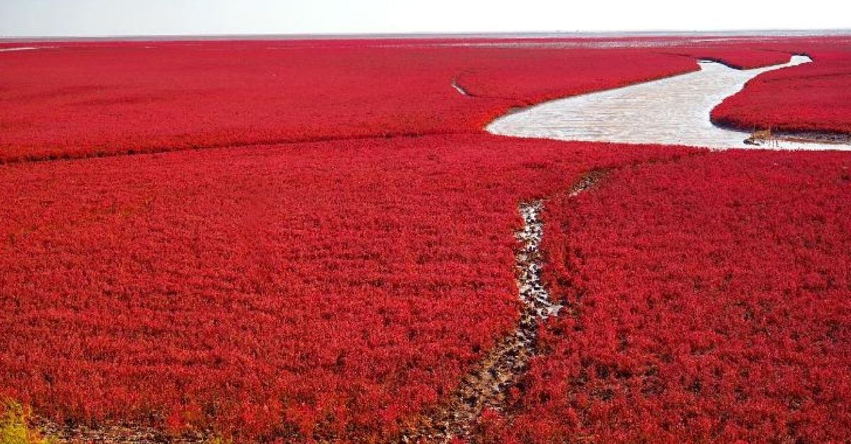 praia vermelha china
