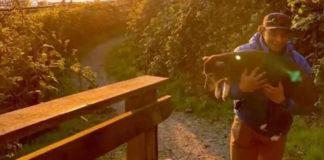 Cachorro sendo carregado no por do sol