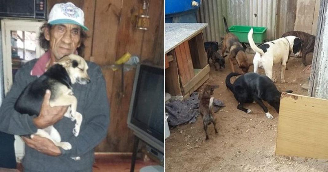 Idoso cuida de cachorros abandonados