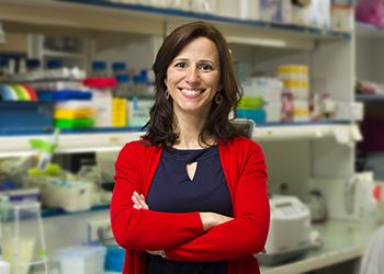 pesquisadora estudo detectou células origem leucemia rara
