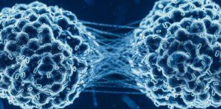 ilustração proteína