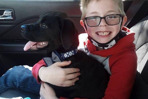 menino salva cachorro com cartas Pokémon