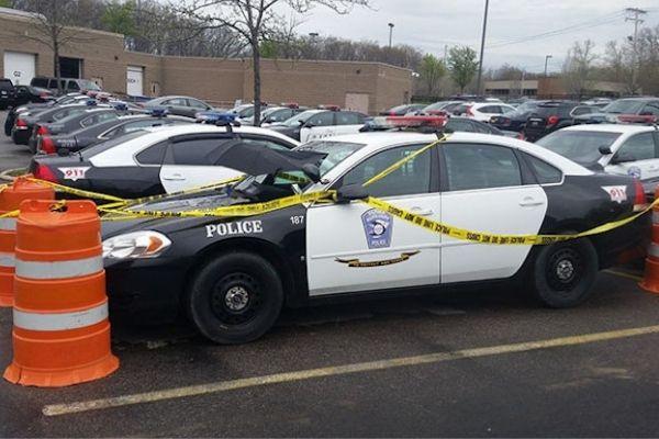 Pomba choca ovos em carro de policiais