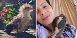 Marcela e passarinho manu