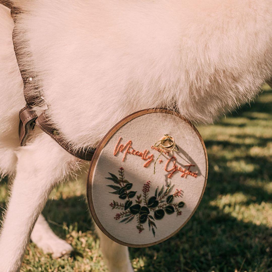cachorrinha cega vira dama de honra casamento