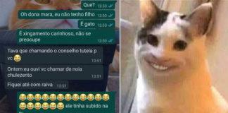 prints mensagens mulher vizinha xingamentos gato