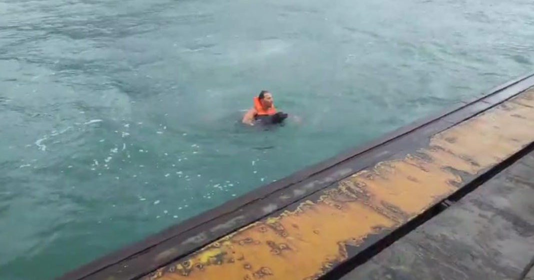 homem resgata cachorro mar