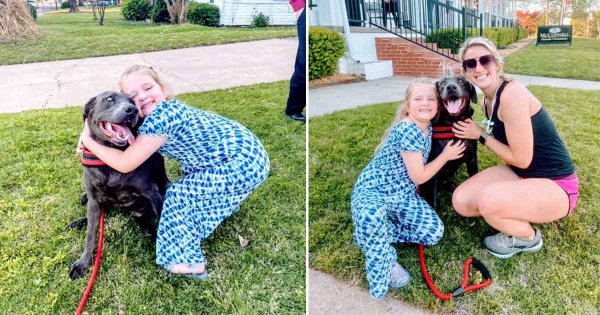 menina abraça pit bull funeral pai
