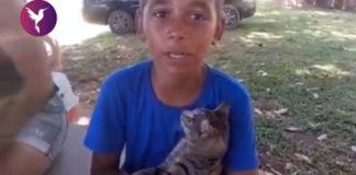 menino segurando gato colo fila castração