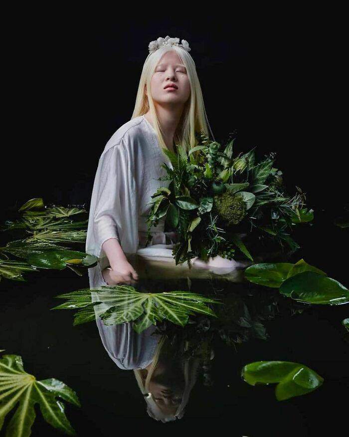 modelo chinesa albinismo ensaio plantas