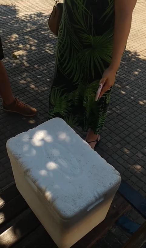 casal contrata vendedor de bolo de pote para trabalhar futura dogueria