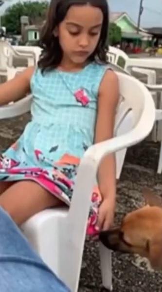 menina doa churrasco cachorrinho de rua