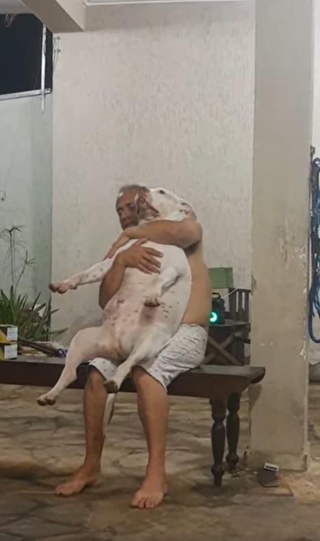 filha flagra pai fazendo carinho em cachorro que ele não queria