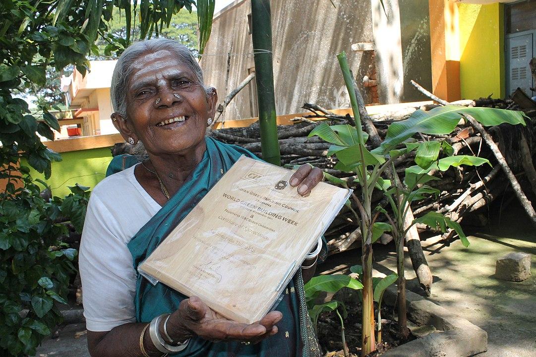 indiana transforma plantio de árvores em propósito de vida