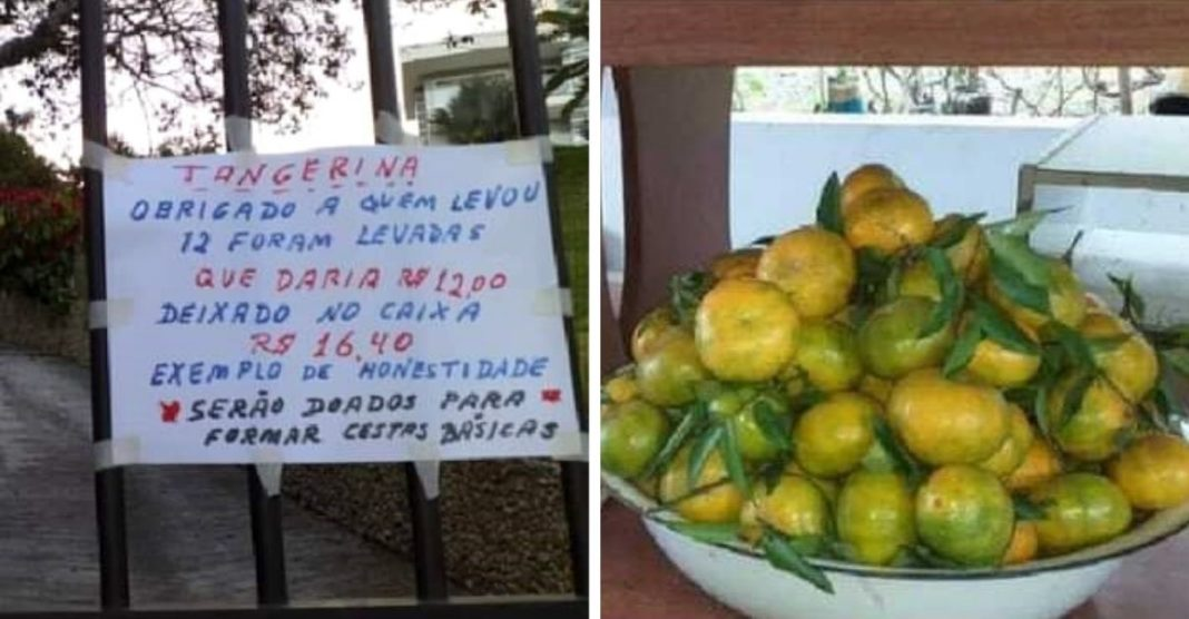 idoso vende sacola de tangerinas para comprar cestas básicas