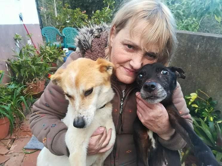 mulher adota cães de abrigo amigos