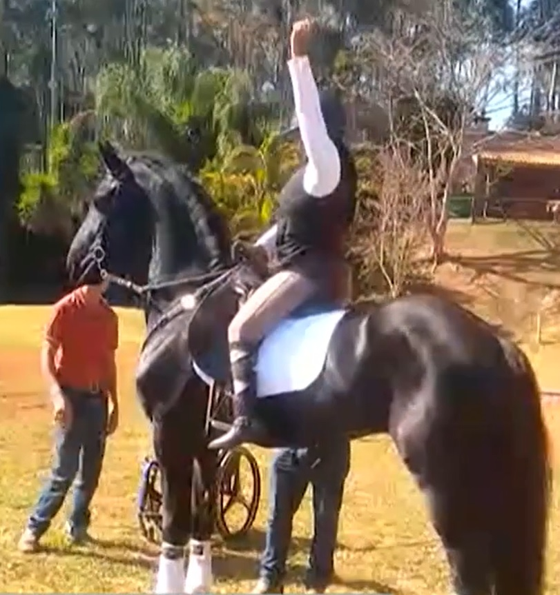cavalo deita no chão para receber atleta cadeirante