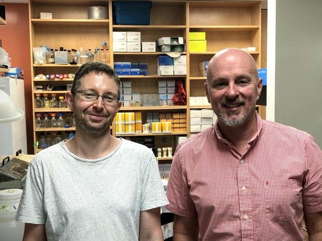 proteína descoberta cientistas combate todos tipos câncer