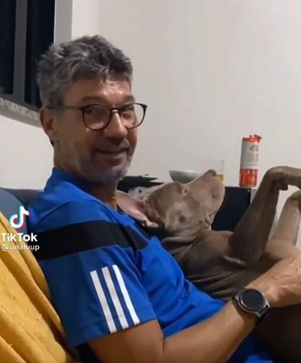 pai que não queria ter cachorro se apaixona pit bull