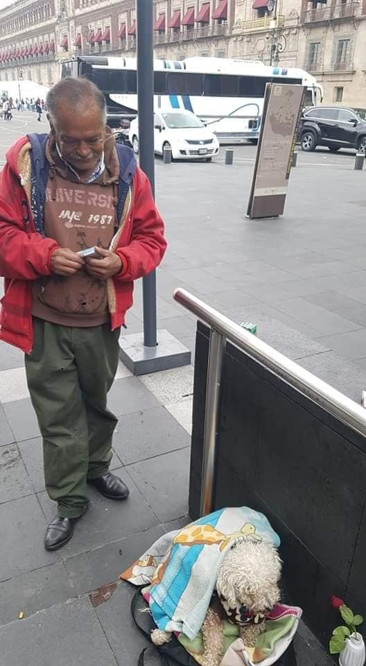 vendedor ambulante cachorro furtado reencontro