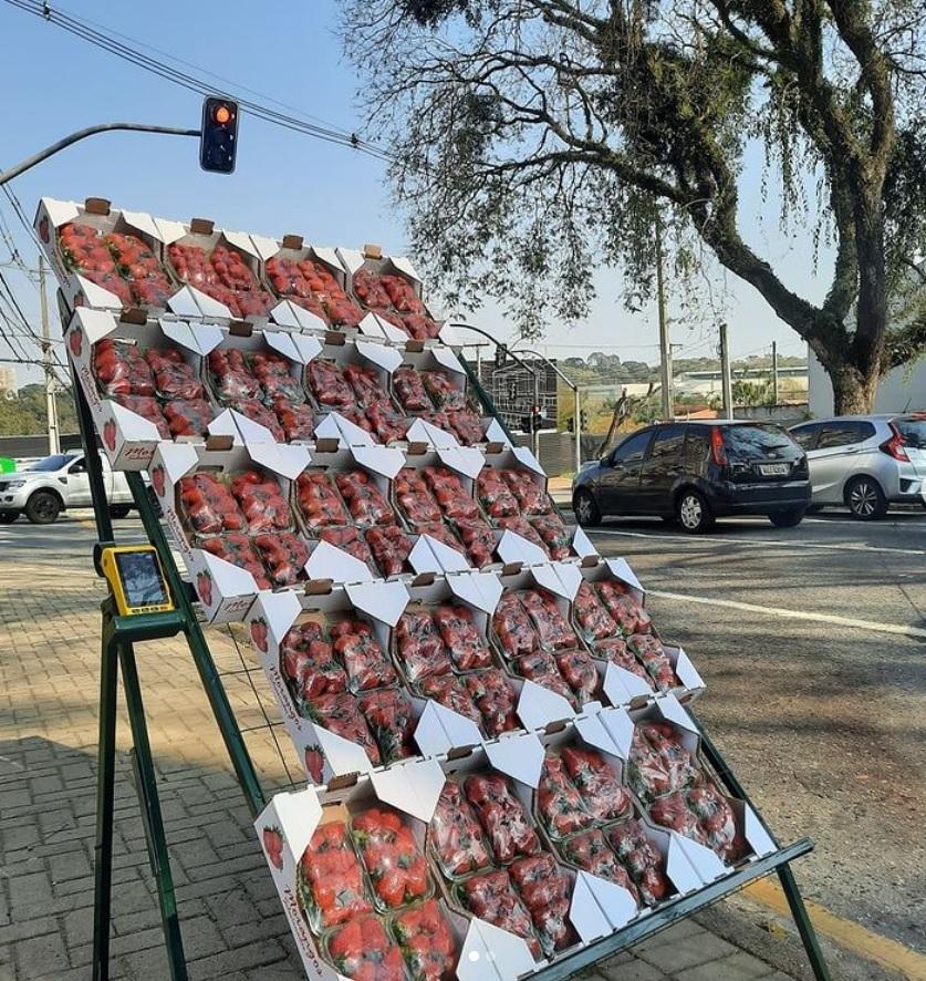vendedor semáforo vende fiado via pix aposta honestidade brasileiro