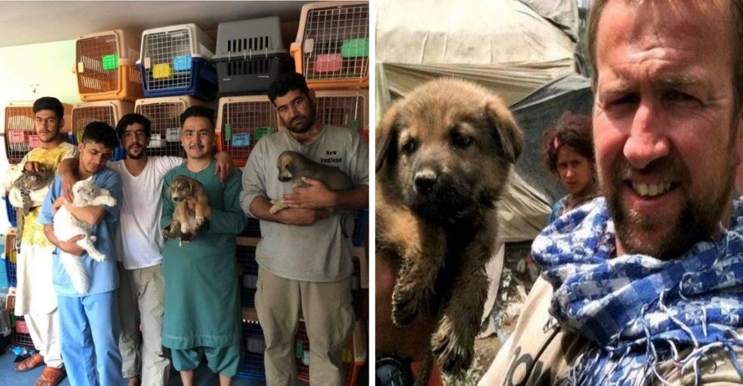 soldado evacuação cães e gatos de santuário que ele cuidava afeganistão