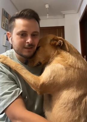 cadela vira-lata caramelo abraça tutor sempre