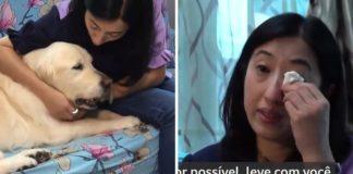 mulher gasta milhares reais levar cão idoso outro continente
