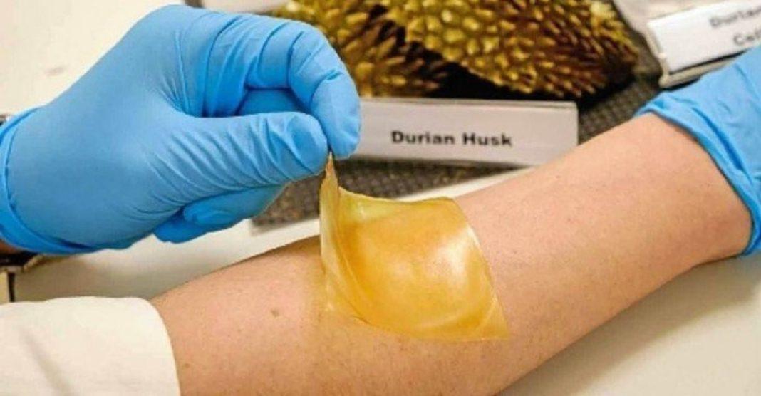 curativo antibacteriano feito cascas de fruta durião