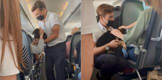 comissário bordo acalma passageiros voo com filhote cachorro