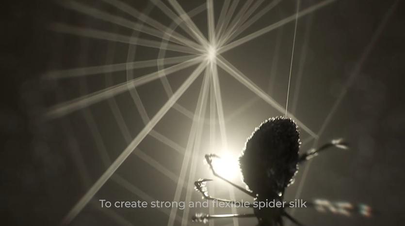 cientistas cambridge criam seda de aranha vegana substituta plástico descartável
