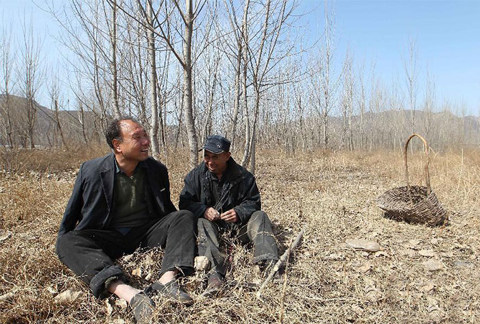 amigos com deficiência reflorestam área china