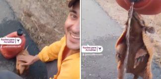 homem dá água tatu com sede estrada vídeo