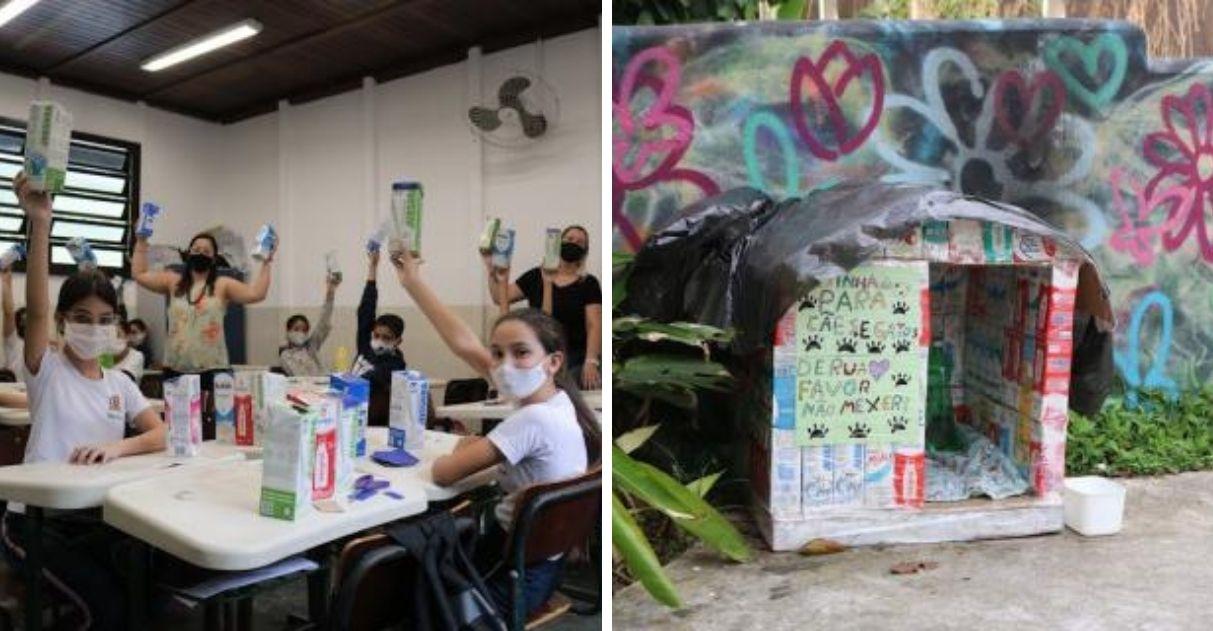 crianças constroem casinhas para cães de rua