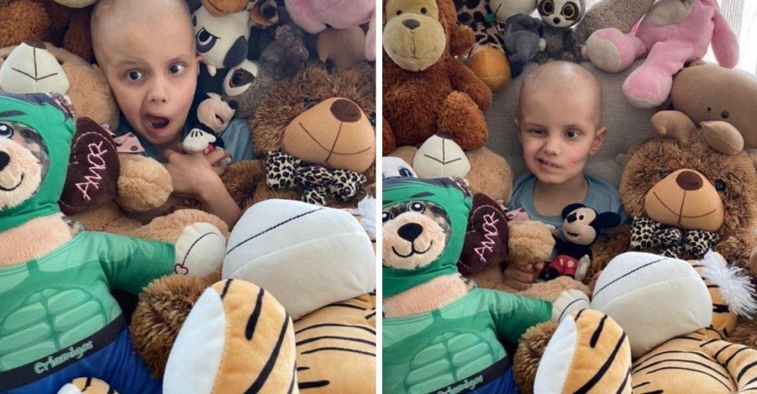 menino com câncer lidera campanha doação ursinhos pelúcia